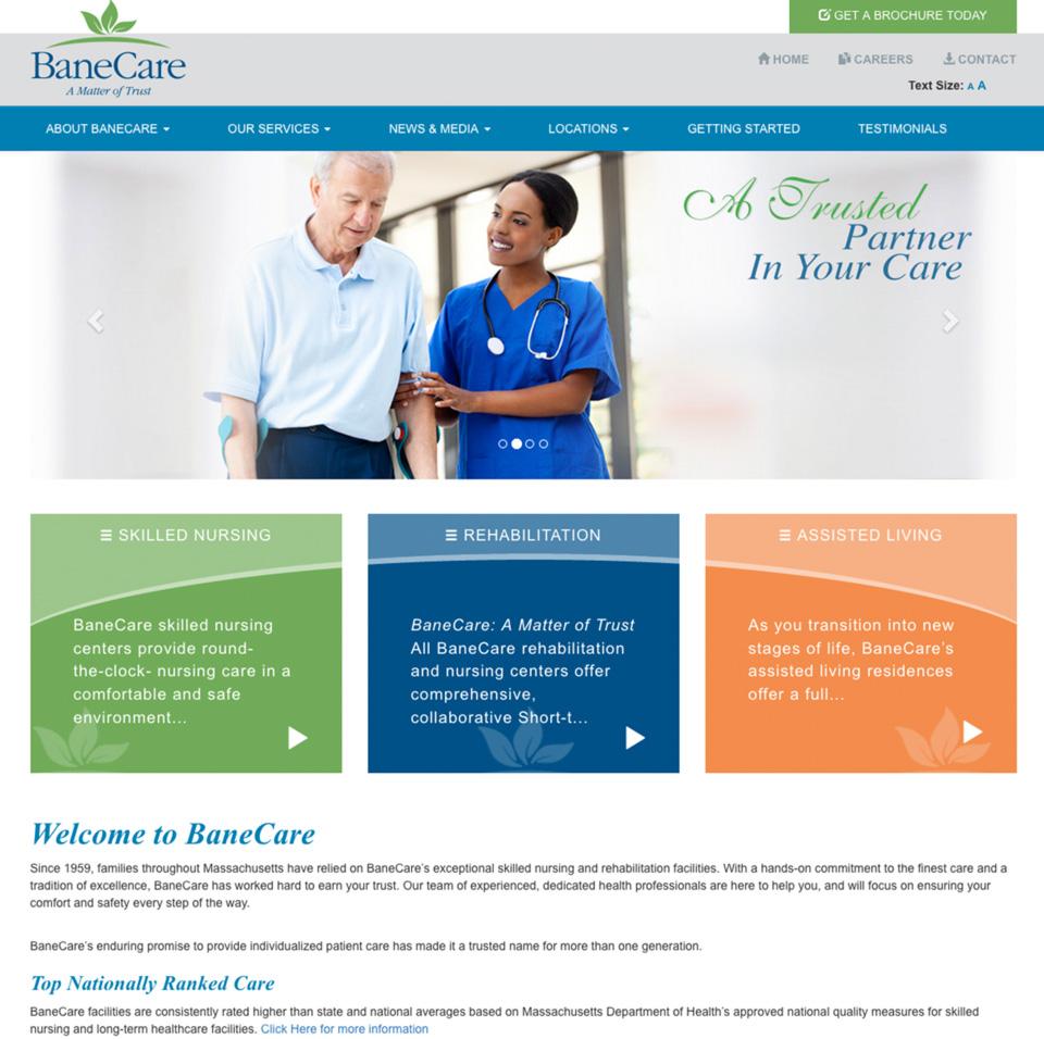 BaneCare Management LLC.  Lachance Design, Website ...